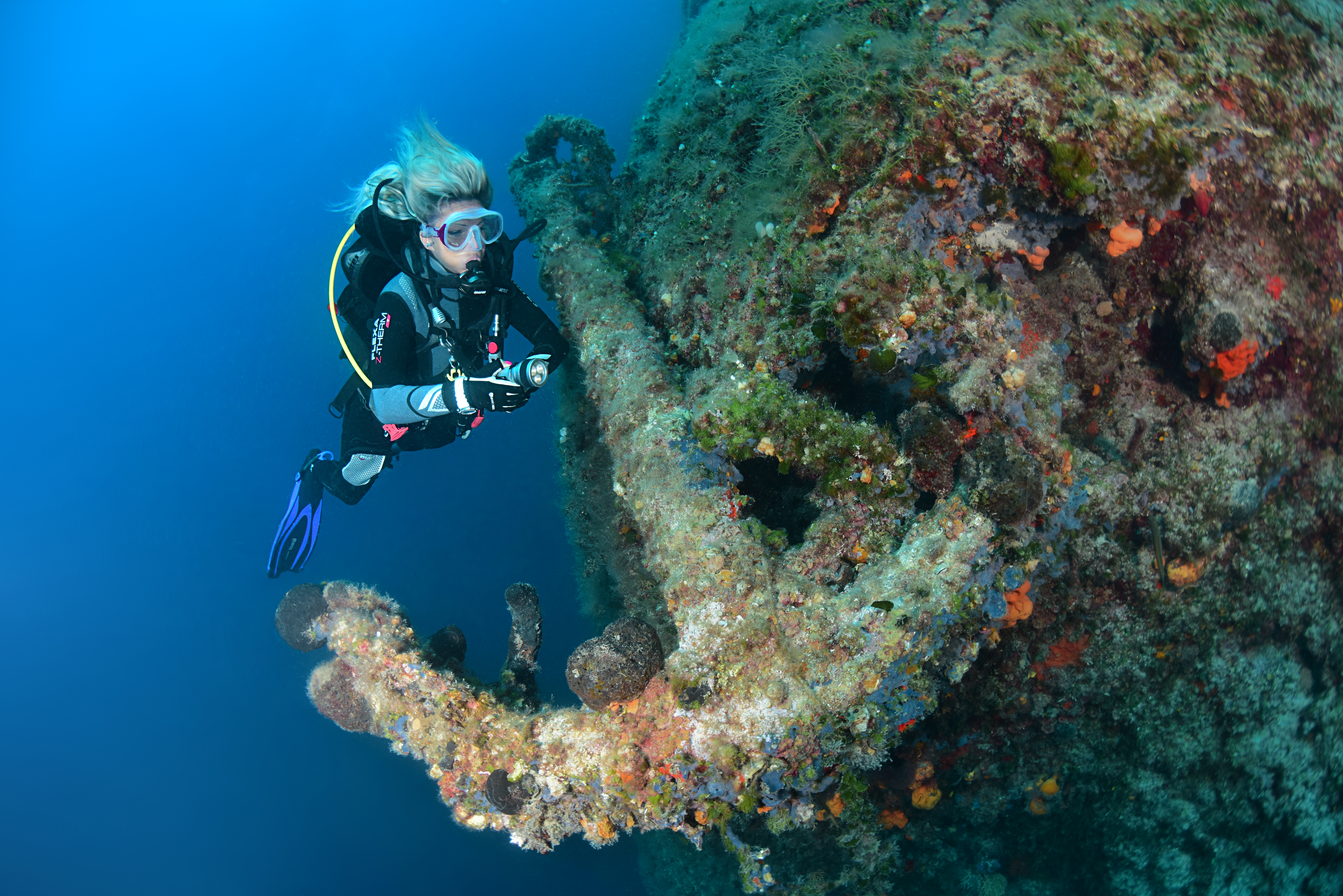 Diver and the anchor